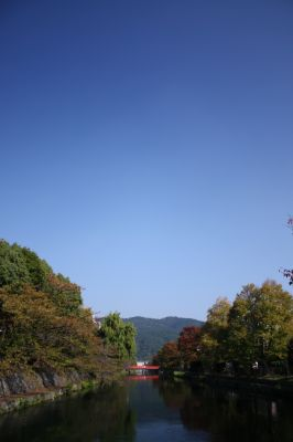 IMG_8248_400.jpg