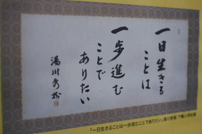 IMG_0370 1.jpg