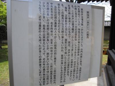 IMG_0303.JPG