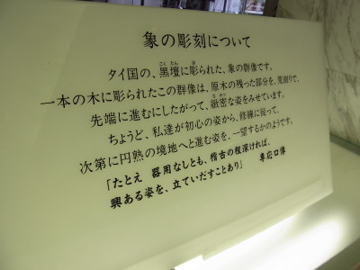 RIMG6768.JPG