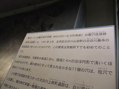 DSCF0779.JPG